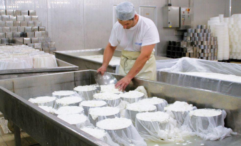 L'azienda ha sviluppato partnership consolidate con diversi caseifici di pianura i quali producono i formaggi destinati alla Gildo Ciresa su precise indicazioni dell'azienda
