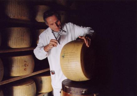 24 Parmigiano Reggiano, only parmesan - espertizzazione