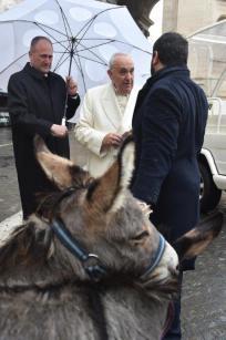 Papa Francesco riceve in dono i due asinelli dal fondatore di Eurolactis (©Servizio Fotografico - L'Osservatore Romano)