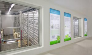 Energia da fonti rinnovabili per gli stabilimenti svizzeri di Emmi