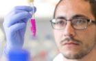 Combattere il cancro e le malattie infettive con le proteine del latte