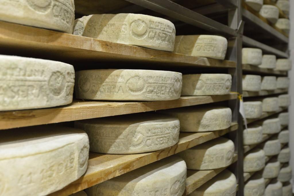 Nata con l'obiettivo di produrre latte alimentare, negli anni la cooperativa si è aperta anche alla produzione di formaggi e altri derivati del latte