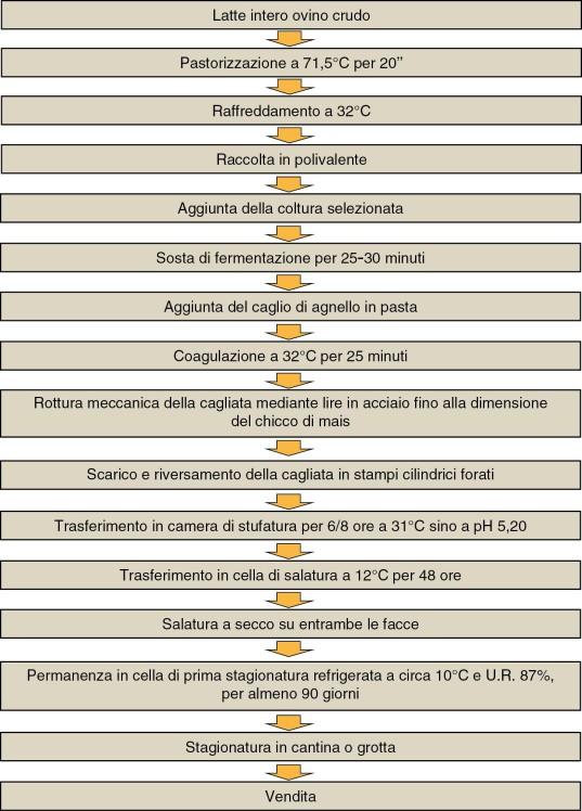 Diagramma di flusso della produzione di Pecorino Falisco