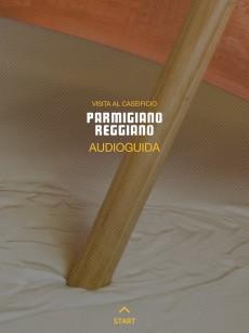 Audioguida Parm Regg 1 picc
