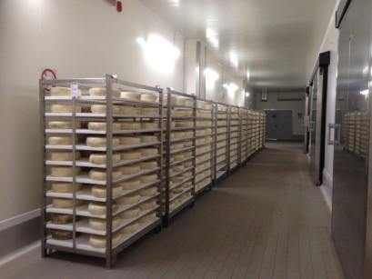 Rack sovrapponibili IFT modello Tafo da 1200x800 mm, per una perfetta manovrabilità in celle e magazzini di stagionatura